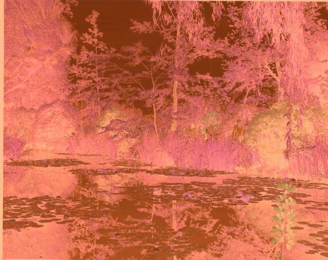 ROMARIC_TISSERAND_CLAUDE_MONET_GIVERNY_PHOTOGRAPHY