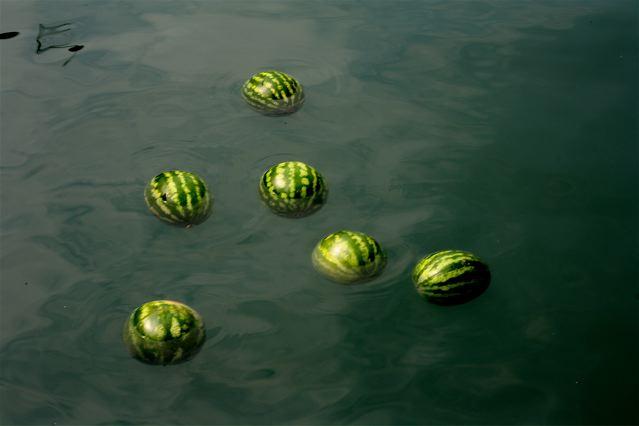 Watermelon-performance-romaric-tisserand-momo-galerie-venice-venezia-venise-biennale-art-architecture-009