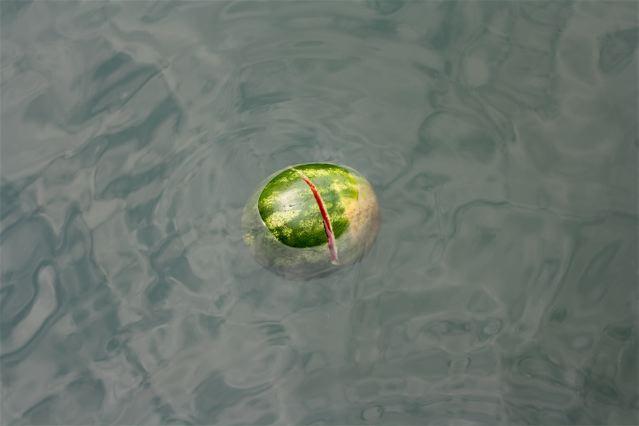 Watermelon-performance-romaric-tisserand-momo-galerie-venice-venezia-venise-biennale-art-architecture-014-1