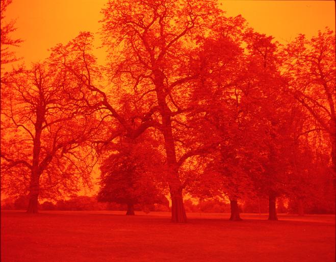 ROMARIC_TISSERAND_PHOTOGRAPHY_LONDON_RED_PHOTOGRAPHY_DATA_CENTER_006